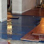 Sewage-Cleanup-Boise-ID