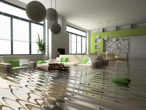 Water damage removal and restoration by ServiceMaster is needed in this modern-looking green and white home