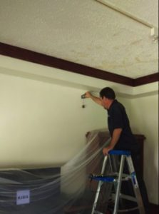mold removal in cartersville ga