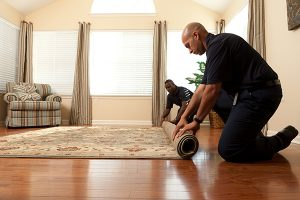 Carpet and Upholstery Cleaning in Castle Rock, CO