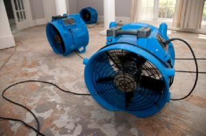water extraction and water damage restoration in Cedar Park, TX - ServiceMaster Restoration by Century