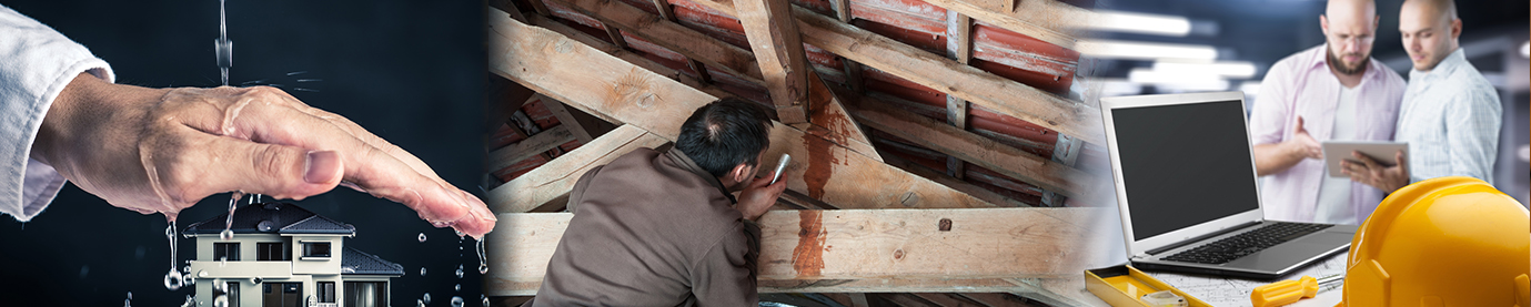 Colorado Springs, CO