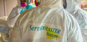 Disinfection and Cleaning Services in Cranford, NJ