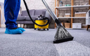 Carpet and Upholstery Cleaning Services - Crystal Lake, IL 60014