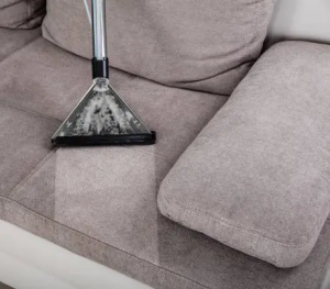 Upholstery Cleaning Services for Elgin, IL