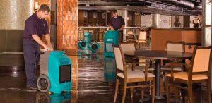 water restoration in fredericksburg va