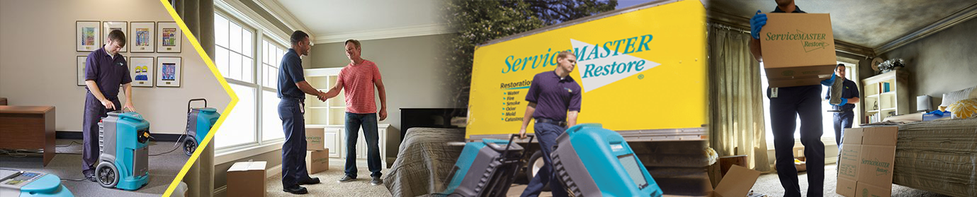 Friendswood, TX - ServiceMaster