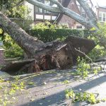 Storm Damage Restoration Garden Grove CA