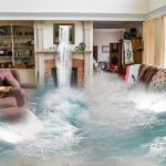 Flood-Cleanup-Greenbelt-MD