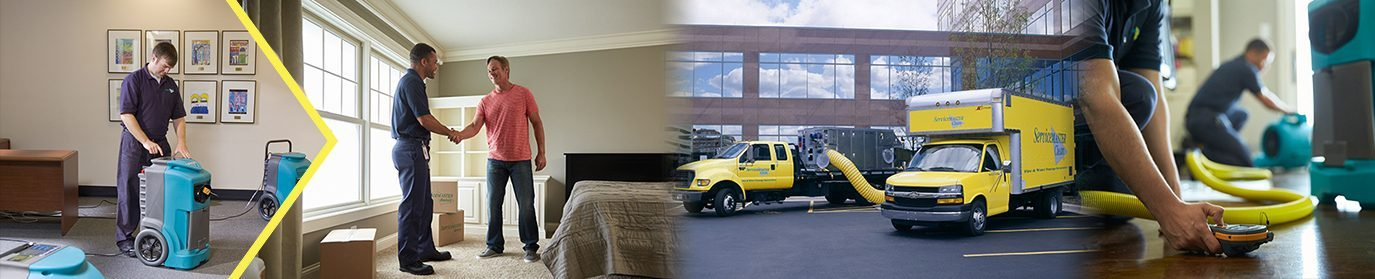 Cleaning Services - Highlands Ranch
