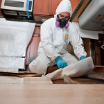 Mold-Remediation-Jacksonville-NC