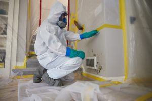 mold remediation in Los Angeles County, CA