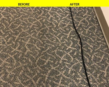 Carpet Cleaning Manchester CT