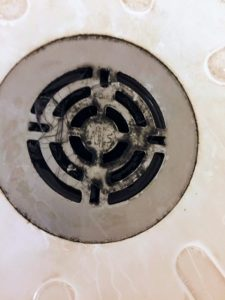 mold removal and remediation is needed by ServiceMaster for this shower drain