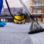clean-carpet-Mundelein-IL