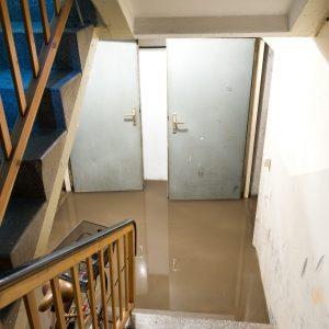 Flood-Damage-Restoration-New Port Richey, FL