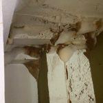 Mold-Remediation-Post-Falls-ID