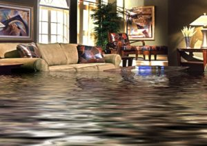 flood damage restoration and cleanup is needed in this Quincy, IL home.