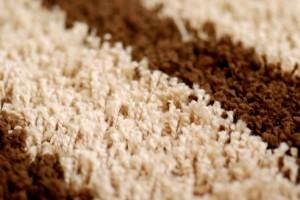 carpet cleaning service in Salt Lake UT