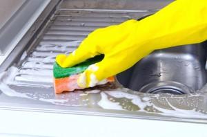 mold prevention colorado