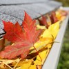 Fall - Home Gutters