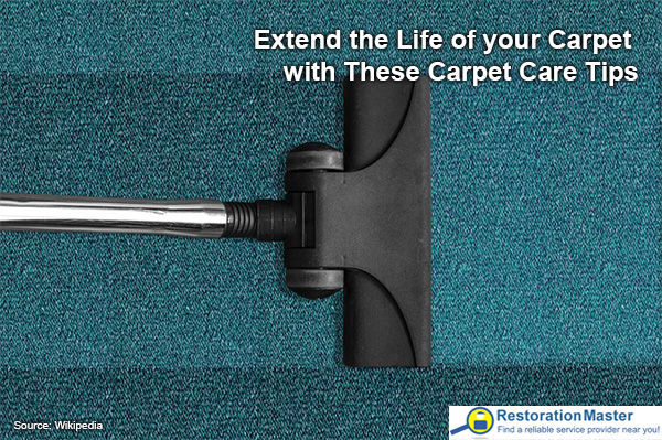 how to keep your carpets fresh