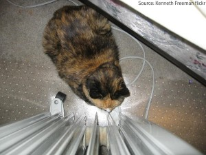 Keep children and pets away from heat sources.
