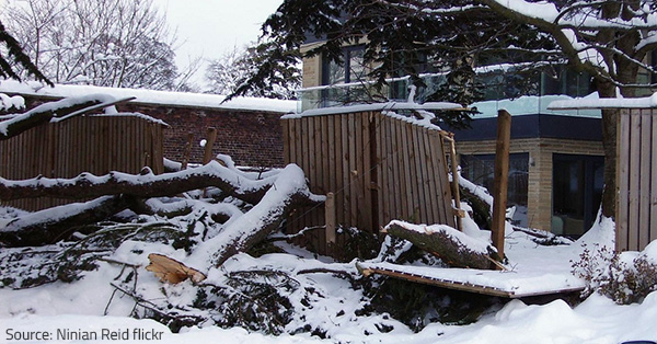 Recovering from winter storm damage is quite a challenge.