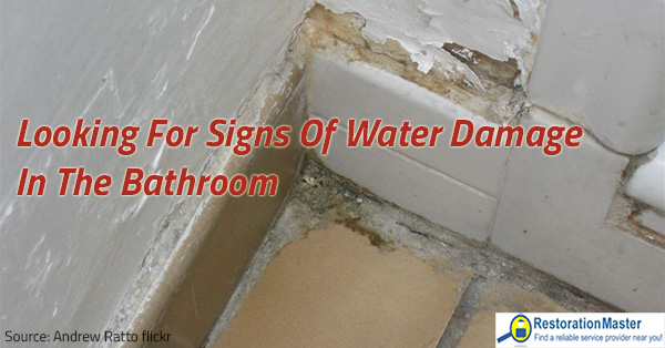 Looking For Signs Of Water Damage In The Bathroom - Bathroom water damage