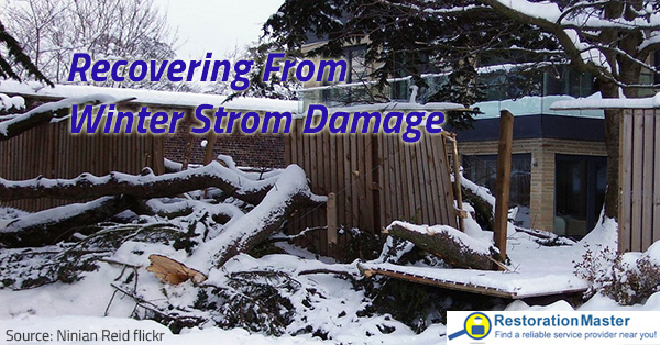 Recovering from winter storm damage is not easy.