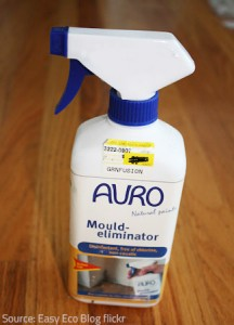 Fungicide sprays effectively kill mold.