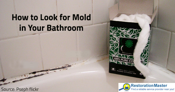 How To Detect Mold In Your Bathroom - I have mold in my bathroom