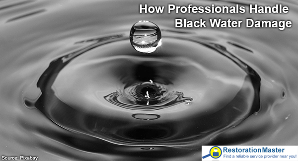 How to handle black water damage