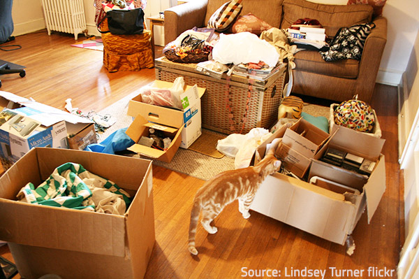 Decluttering can be fun for everyone.