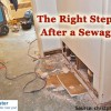 after-sewage-backup
