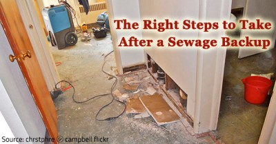How can Sewage be cleaned up?