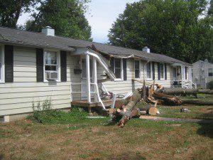 storm-damage-fallen-trees
