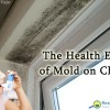How mold affects children.