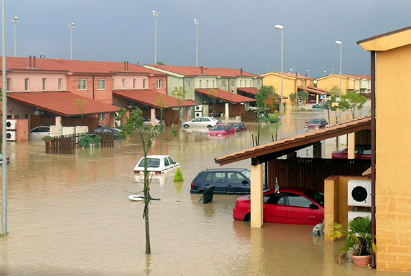 Homeowner's insurance coverage excludes floods, sewage backups, mold, and other common perils.