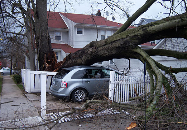 Make sure your insurance policy covers the most common perils in your area.