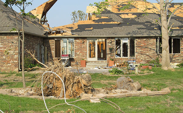 Securing your home will help you prevent further troubles.