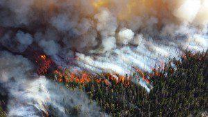 Fire Damage Restoration - Smoke Removal