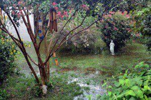 Backyard flooding can eventually reach your home.