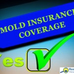 Does insurance cover mold removal?