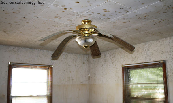 Water damage is often difficult to detect until it is already too late.