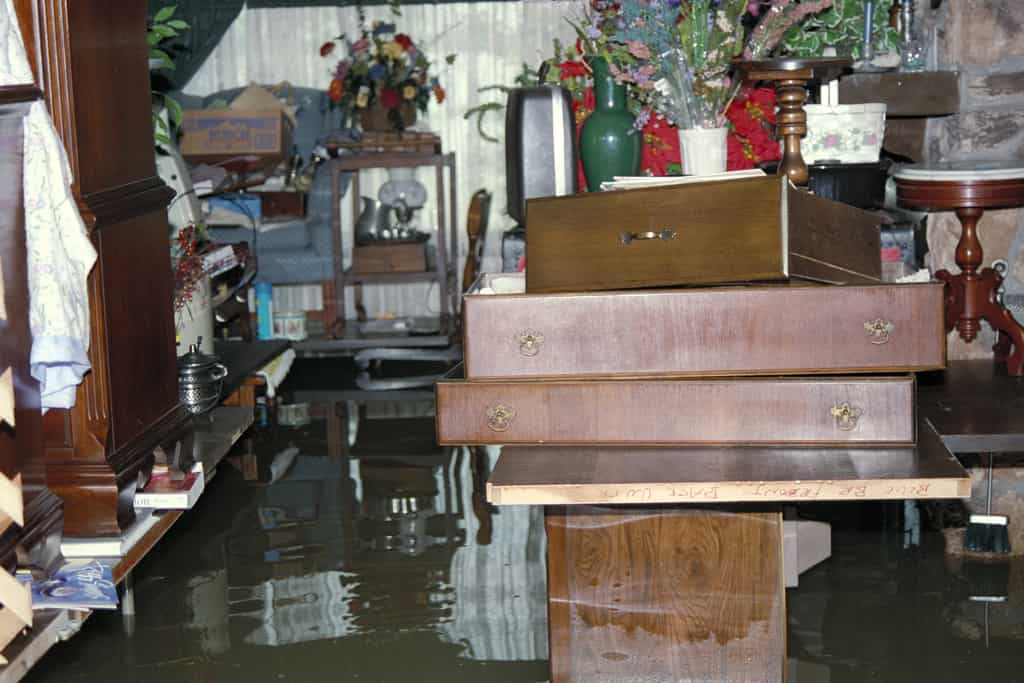 sewage backup in basement