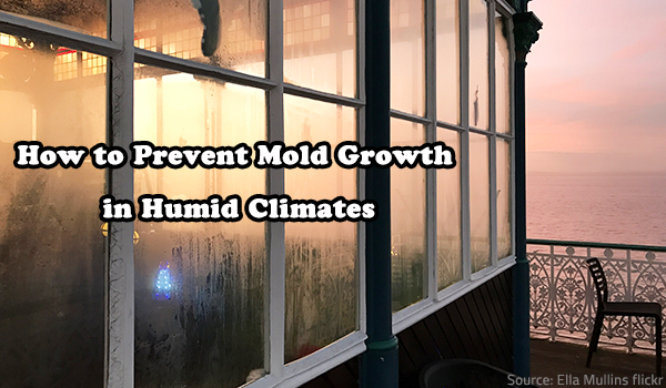 How to Prevent Mold Growth in Humid Climates