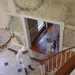 Residential Mold Remediation