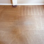 carpet-cleaning-services-after