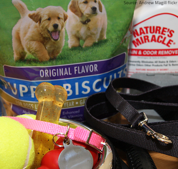 Stock on the essential pet supplies your animal friend needs.